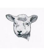 Selection de cuirs et peaux d'agneau - Cuir Naturel