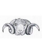 Notre offre de peaux et cuirs de mouton - Cuir Naturel